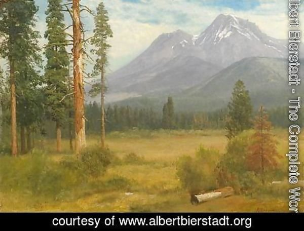 Albert Bierstadt - Mt. Shasta, California