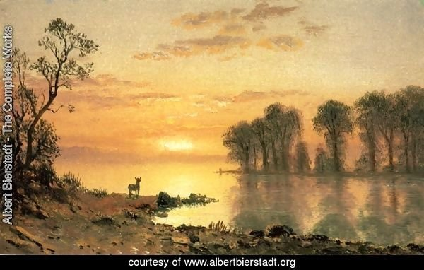 Sunset, Deer, and River