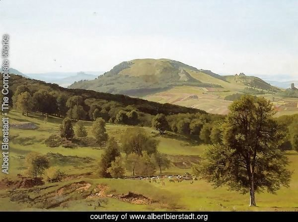 Landscape: Hill and Dale