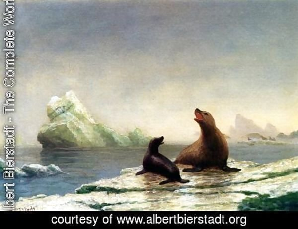 Albert Bierstadt - Seals