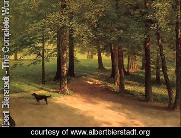 Albert Bierstadt - Irvington Woods