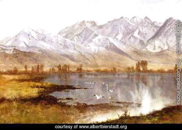 a biography of albert bierstadt and his work among the sierra nevada mountains This skilful painter albert bierstadt is well-known for his unique work among the sierra nevada mountains.
