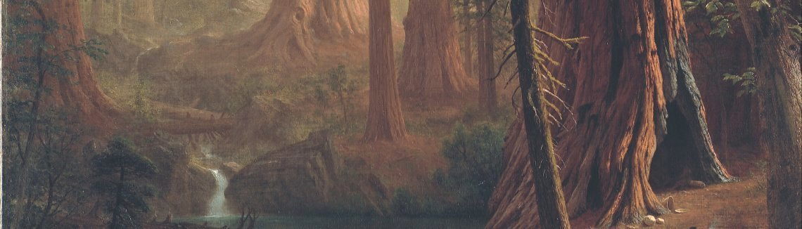 Albert Bierstadt - Giant Redwood Trees of California