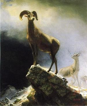 Albert Bierstadt - Rocky Mountain Sheep