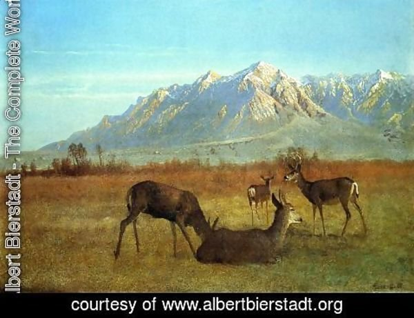 Albert Bierstadt - Deer in a Mountain Home