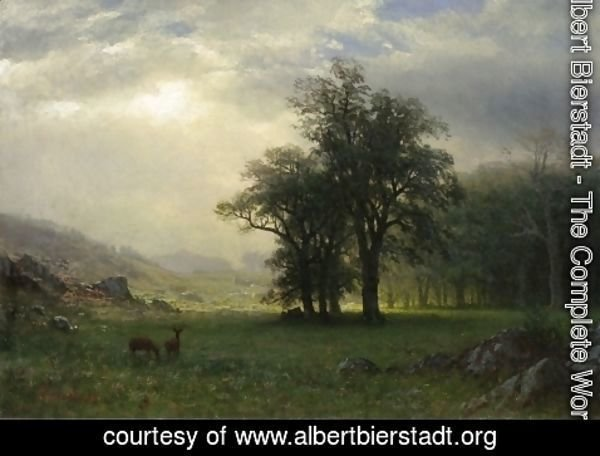 Albert Bierstadt - The Open Glen