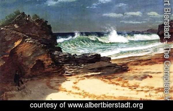 Albert Bierstadt - Beach at Nassau 2