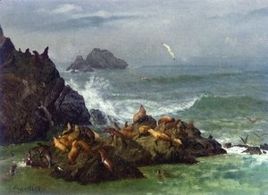 Seal Rocks, Pacific Ocean, California