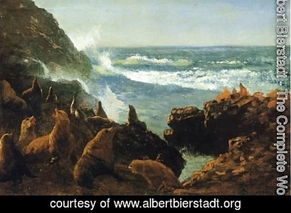 Albert Bierstadt - Sea Lions, Farallon Islands