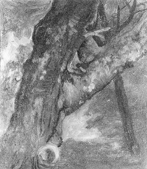 Albert Bierstadt - Study Of A Tree