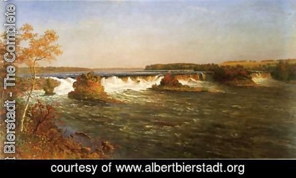 Albert Bierstadt - Falls Of Saint Anthony