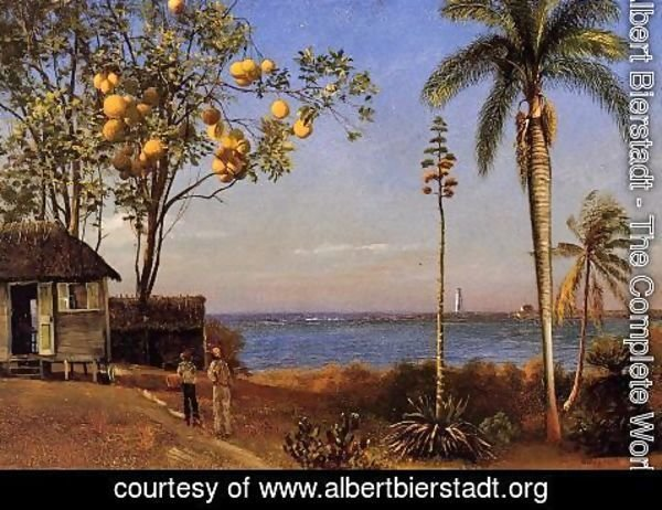 Albert Bierstadt - A View In The Bahamas