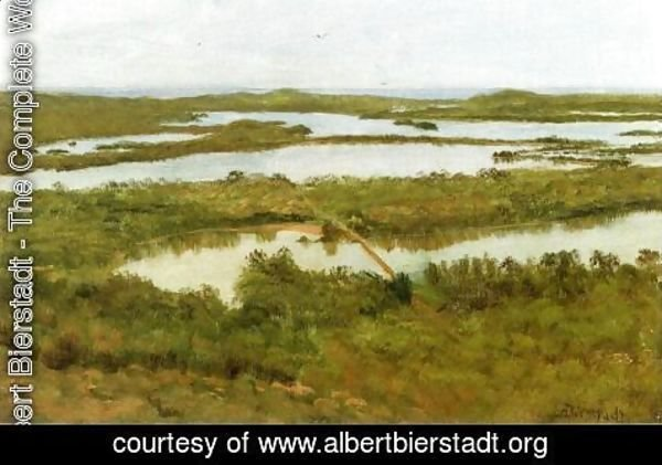 Albert Bierstadt - A River Estuary