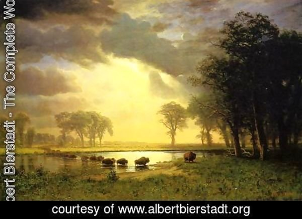 Albert Bierstadt - The Buffalo Trail