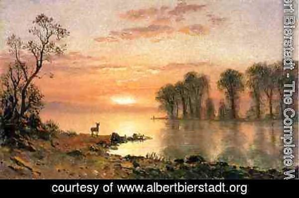 Albert Bierstadt - Sunset  Deer  And River