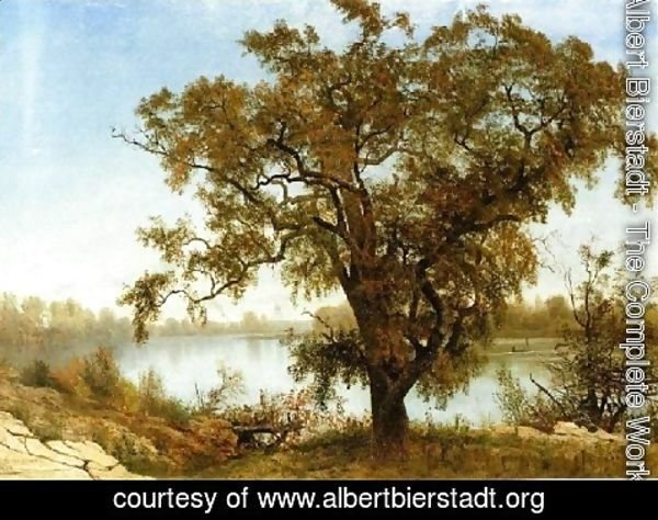 Albert Bierstadt - View From Sacramento